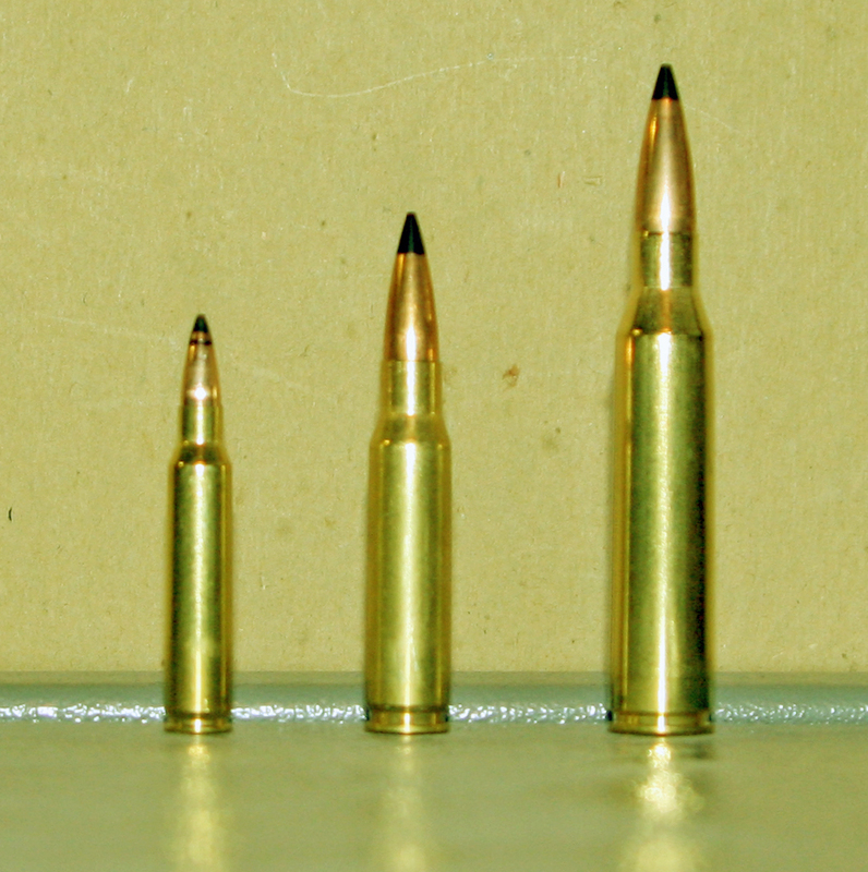 left to right: 5.56 mm NATO, 7.62 mm NATO, .338 Lapua Magnum