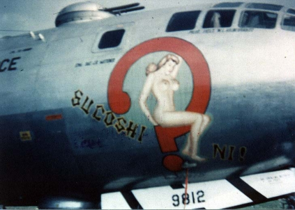 B 17 Nose Art Name Directory  AbeBooks
